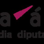 Resolución de convocatorias de la diputación foral de Alava por Euskal Irudigileak